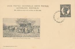 Australie - Queensland - Chargement De Cannes à Sucre - North Isis Sugar Mill - Oblitéré - Covers & Documents