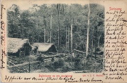 1900 T.P. CIRCULADA , SURINAME / SURINAM ,  BUITENKAMP OP EEN GOUDALACET, CAMPAMENTO DE BUSCADORES DE ORO. GOLD - Surinam