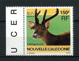 Nlle Calédonie 1994 N° 664 ** Neuf MNH Superbe C 4 € Faune Tête De Cervidé élevage De Cerf Foire De Bourail Animaux - Sin Clasificación