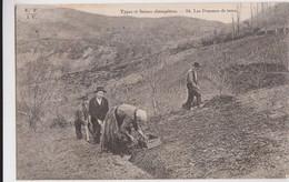 CPA - 19 - Types Et Scènes Champêtres - Les Pommes De Terre - Edit E.F.I.U à Ussel N° 54 (Eyboulet Frères) - Unclassified