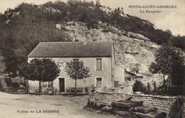 NUITS SAINT GEORGES  Le Sanglier Vallée De LA SERREE - Nuits Saint Georges