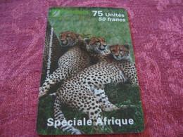 Telecarte  / Carte Prepayée   / Special Afrique - Tarjetas Prepagadas: Otras