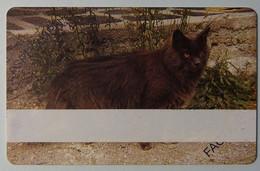 FRANCE - Test - Printing - Specimen - Factice - CAT - Matt Finish - Variedades