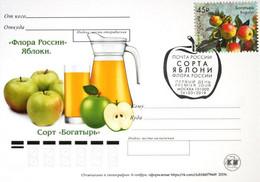 2456 Flora Of Russia Apple Varieties Card 2019 - Neufs