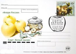 2457 Flora Of Russia Apple Varieties Card 2019 - Neufs
