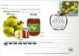 2458 Flora Of Russia Apple Varieties Card 2019 - Neufs