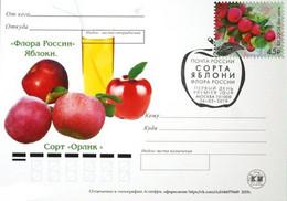 2459 Flora Of Russia Apple Varieties Card 2019 - Neufs