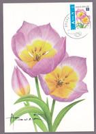 """Carte Maximum  FLEURS - BUZIN André - Tulipe """"Bakeri"""" - Timbre N°3872 ND En Haut - Oblitération Bruxelles - 2001-2010"""