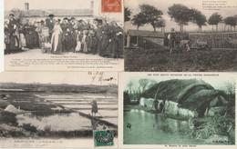VENDEE-Joli Lot 239 Cartes Postales Toutes Scannées- - 5 - 99 Postcards