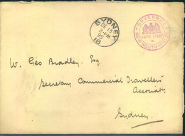 1895, Gouvernment Letter In SYDNEY With Decorative Imprint On Back. - Non Classés