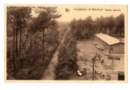 KALMTHOUT - Cuylitshof - Rustkuur Openlucht - Verzonden - Kalmthout