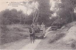 Environs De Royan Le Train Forestier De La Grande Cote L'arrivée - Royan