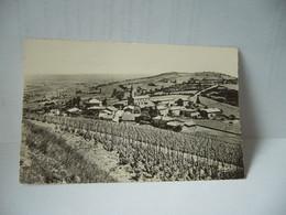 PRUZILLY 71 SAÔNE ET LOIRE VUE GENERALE CPSM FORMAT CPA 1953 PHOTO COMBIER MACON - Sonstige Gemeinden