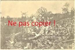 PHOTO FRANCAISE DU 265e RI - LE CIMETIERE DE CERIZY PRES DE MOY DE L'AISNE - SAINT QUENTIN 1917 - GUERRE 1914 1918 - 1914-18