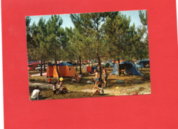 40-----AU PAYS LANDAIS---Camping Sous Les Pins--voir 2 Scans - Unclassified