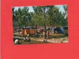 40-----DANS LES LANDES--Camping Sous Les Pins--voir 2 Scans - Unclassified