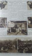 DOMENICA DELL'AGRICOLTORE 1936 REGGIO CALABRIA IL BERGAMOTTO - Otros
