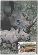 Bophuthatswana - Rinozeros - Nashorn - Rhinoceros