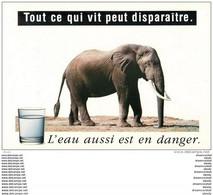 Photo Cpm Cpsm ELEPHANTS. L'eau Aussi Est En Danger. De La Parts Des Afficheurs - Olifanten