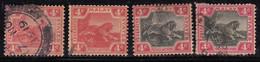 4c X 4 Diff., Shades,  Federated Malay States Used 1904, Wmk Multi Crown CA, Tiger, Animal, Malaya / Malaysia - Federated Malay States