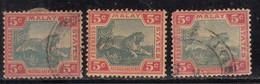 5c X 3 Diff., Shades,  Federated Malay States Used 1900, Wmk Crown CA, ?? Tiger, Animal, Malaya / Malaysia - Federated Malay States
