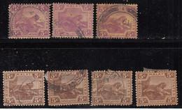 5c X 7 Diff., Shades,  Federated Malay States Used 1922, Wmk Script CA, Tiger, Animal, Malaya / Malaysia - Federated Malay States