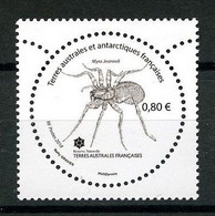 TAAF 2018  N° 847 ** Neuf MNH Superbe Faune Insectes De Crozet Myro Jeanneli Animaux - Neufs