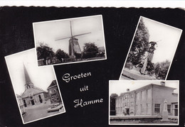 HAMME / MULTIVIEW / GROETEN UIT - Hamme