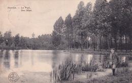 HAMME / DEN BUNT  1913 - Hamme
