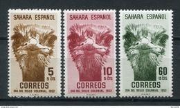 Sahara 1952. Edifil 98-100 ** MNH. - Sahara Espagnol