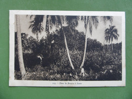 NOUVELLES - HEBRIDES ( VANUATU )  N° 125 Dans La Brousse A SANTO             - Timbres - Vanuatu