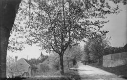 Evilard Leubringen S/ Biel Bienne Allée Des Cerisiers Evillard - BE Berne
