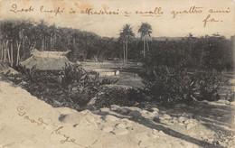 """M012321 """"TIMOR PORTUGUÊS-UMA PAISAGEM DE VIQUEQUE"""" -VERA FOTO-CART SPED 1931 - East Timor"""