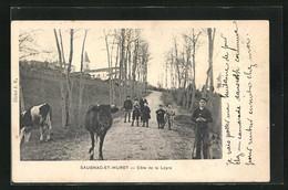 CPA Saugnac-et-Muret, Cote De La Leyre, Des Enfants Avec Vachesn Auf Dem Weg - Unclassified
