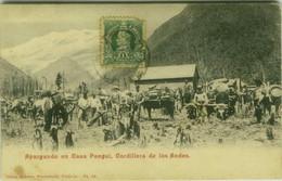 CHILE - APARGANDO EN CASA PANGUI - CORDILLER ANDES EDIT WIEDERHOLD 1900s (BG36) - Chile