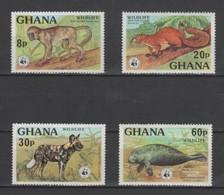 (S0351) GHANA 1977 (WWF. Wildlife). Complete Set. Mi ## 702A-705A. MNH** - Ghana (1957-...)