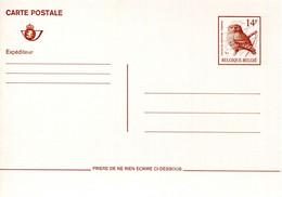 11190502 BE; Oiseau De Buzin, Chouette Chevèche; Carte Postale 14bef - Postales [1951-..]