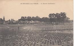 91 - SAINT MICHEL SUR ORGE - ESSONNE - LE MARAIS GUILLOTEAUX - VOIR SCANS - Saint Michel Sur Orge