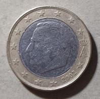 2002 - BELGIO  - MONETA  DEL VALORE  DI  1,00  EURO - CIRCOLANTE - Belgien