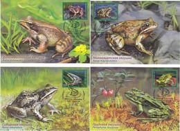 Russia 02 2021 2732-2735 NO EXTRA FEES Fauna Amphibian Frogs Pond Siberian Asia Minor Far Eastern - Tarjetas Máxima