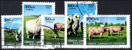 Turkey 1964 Animal Protection Fund Fine Used. - Gebraucht