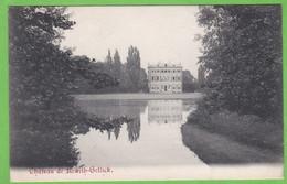 LANAEKEN   -   Château De Rewith-Gellick - Lanaken