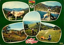 88 - Vosges - Multivues - Vaches - Chèvres - Folklore - CPM - Voir Scans Recto-Verso - Andere Gemeenten