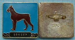 USSR / Badge / Soviet Union / RUSSIA Fauna. Dog. Boxer. - Animales