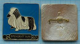 USSR / Badge / Soviet Union / RUSSIA Fauna. Dog. Japanese Chin . - Animales