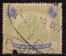 $5 Used 1922 - 1934, Federated Malay States, (Cond., Pin Hole)  Wmk Multi Script, Elephant, Animal, Malaya / Malaysia - Federated Malay States