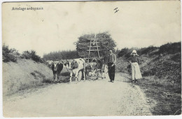 (AYWAILLE) : Attelage Ardennais - Photo Prise Sur Les Hauteurs D'Aywaille - Aywaille