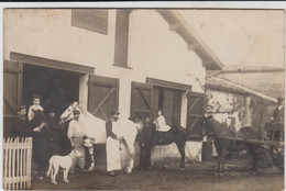 SAINT SULPICE ET CAMEYRAC PHOTO CARTE HARAS CAILLIBAUD MEDECIN VETERINAIRE CHEVAUX RENTRANT AU BOX 1908 TBE - Other Municipalities