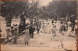 241 - SANARY Sous Les Palmiers Du Port - Sanary-sur-Mer