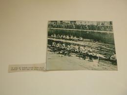 """Origineel Knipsel ( C 167 ) Uit Tijdschrift """" De Stad """" 1934 :    Roeien  Gent  Gand - Zonder Classificatie"""